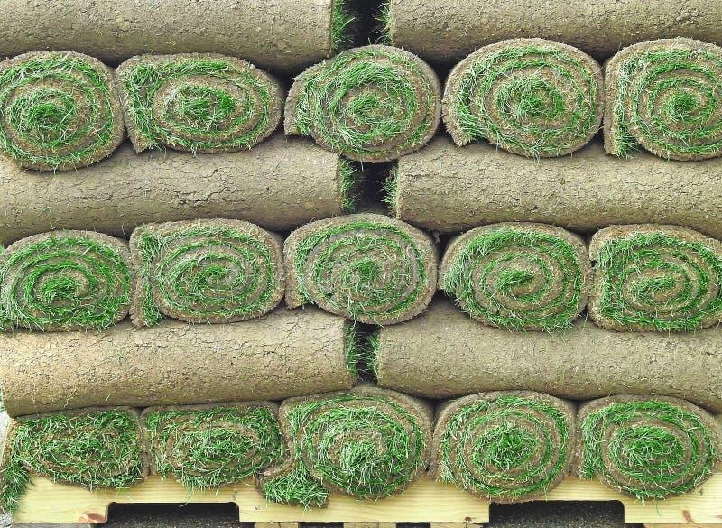 Rolls des piles de gazon de pelouse d'herbe empilées sur le plateau en bois de palette photos libres de droits