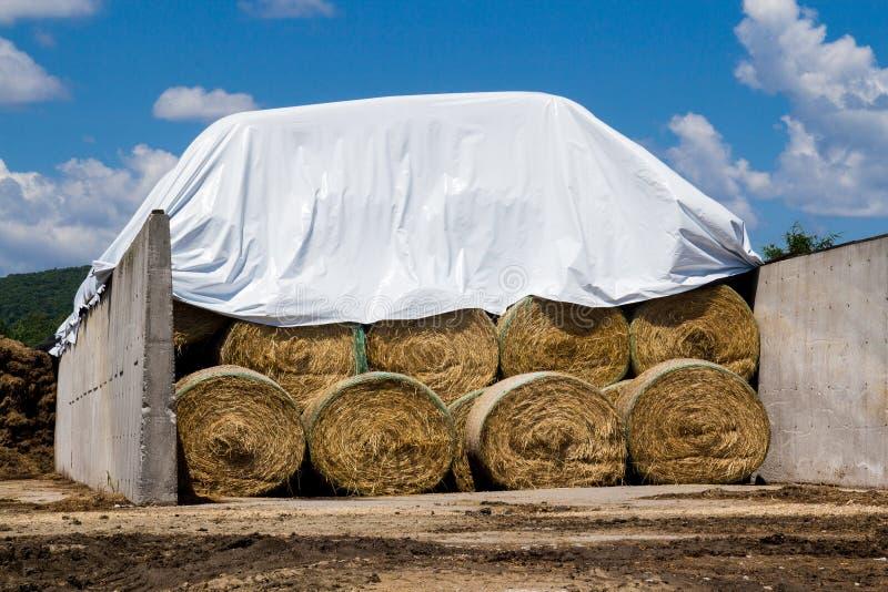Rolls di fieno impilato fotografia stock