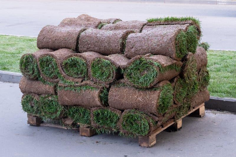 Rolls di prato inglese naturale con la terra impilata sui pallet in una pila immagini stock libere da diritti