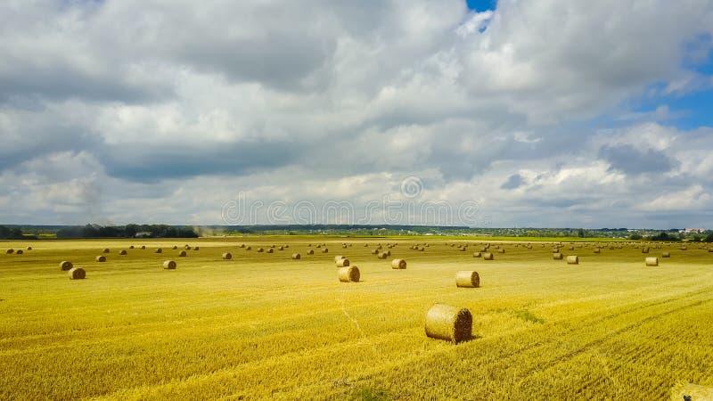 Rolls dos monte de feno no campo Cenário da exploração agrícola do verão com haysta imagem de stock