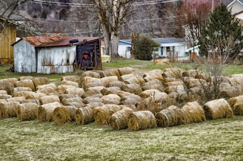 Rolls of hay royalty free stock photos