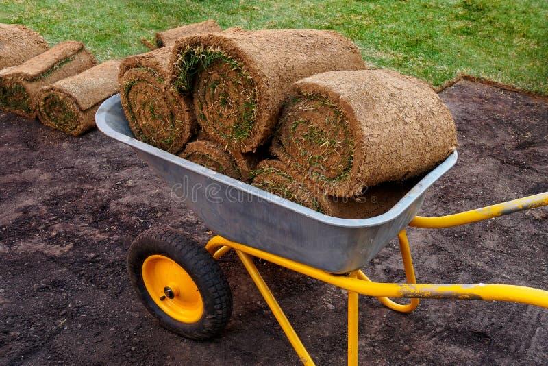Rolls med grönt gräs i jordningen i en vagn för en ny gräsmatta arkivbild