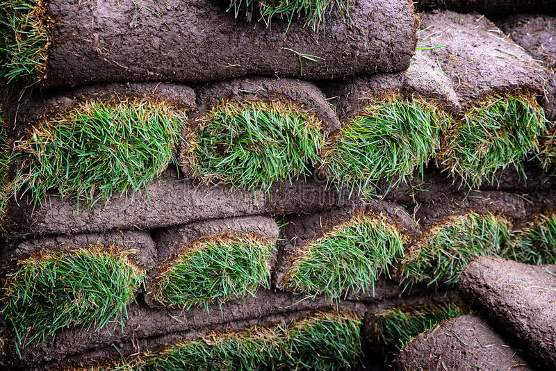 Rolls of Sod. Rolls of fresh sod grass ready to lay royalty free stock images