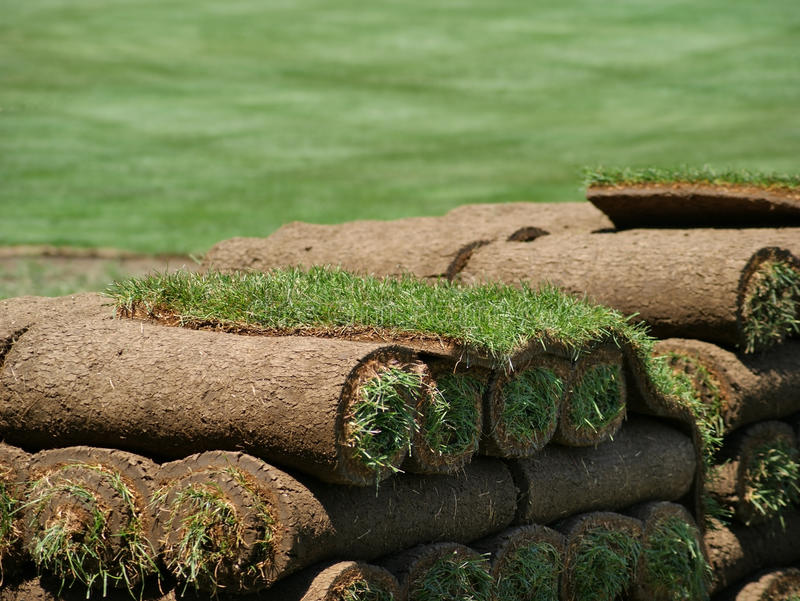 Rolls of Sod on a Turf Farm royalty free stock photography