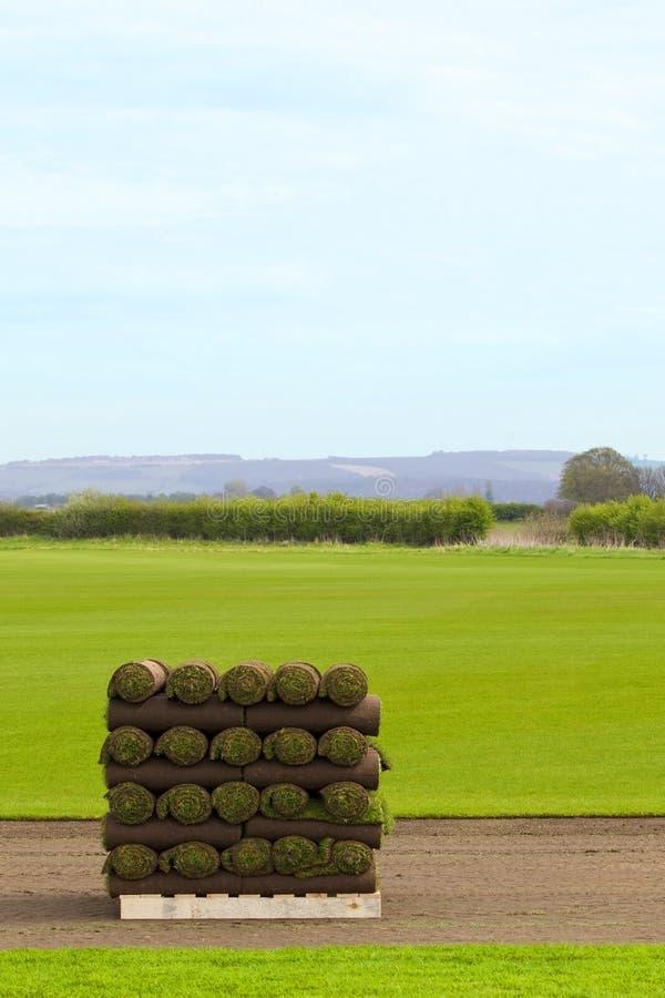 Rolls of turf stock photo