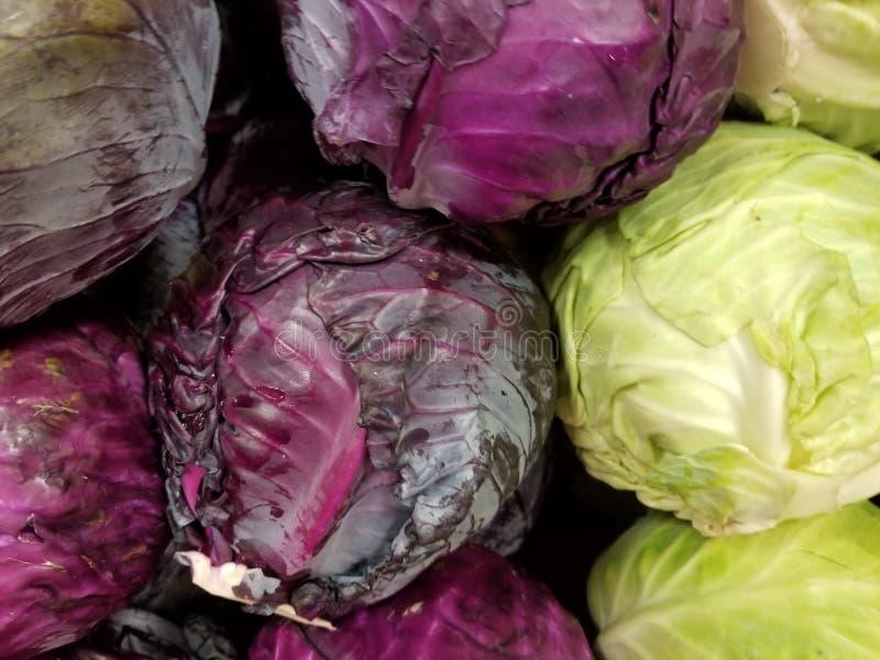Rolne Świeże Organicznie purpury i Greean kapusta obraz stock