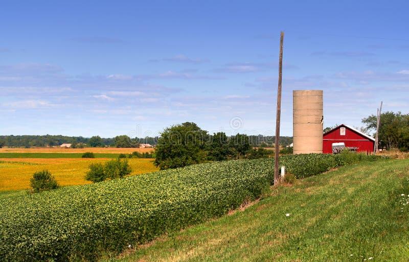 rolne ziemie fotografia stock