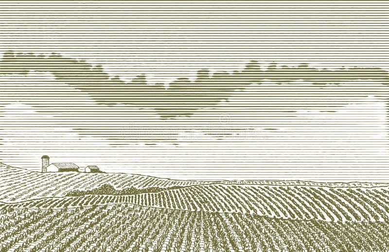 Rolnego pola rysunek royalty ilustracja