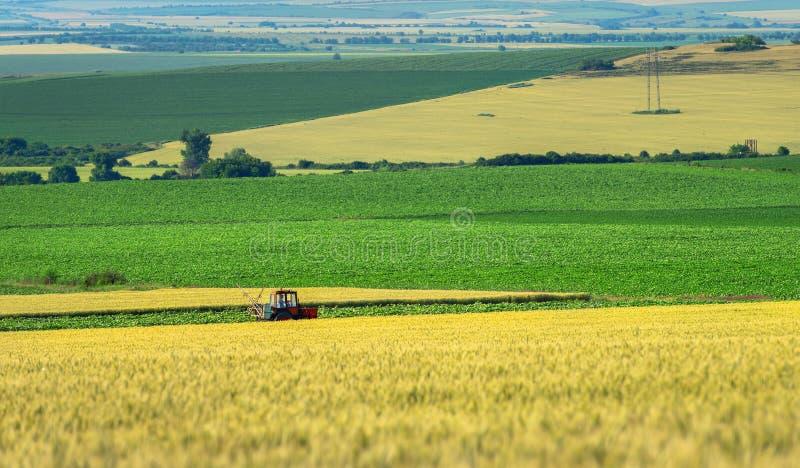 Rolnej maszynerii opryskiwania flit zielony pole, agricult obrazy royalty free