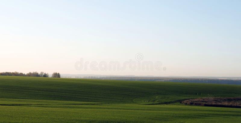Rolnej maszynerii opryskiwania flit zielony pole Rolniczy naturalny sezonowy wiosny tło fotografia royalty free