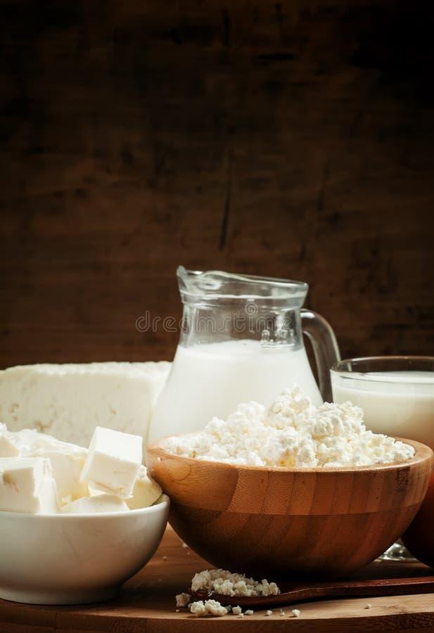 Rolni organicznie nabiały: mleko, jogurt, śmietanka, chałupa ser zdjęcie royalty free