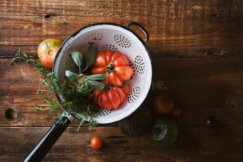 Rolni pomidory i ziele w colander obraz stock