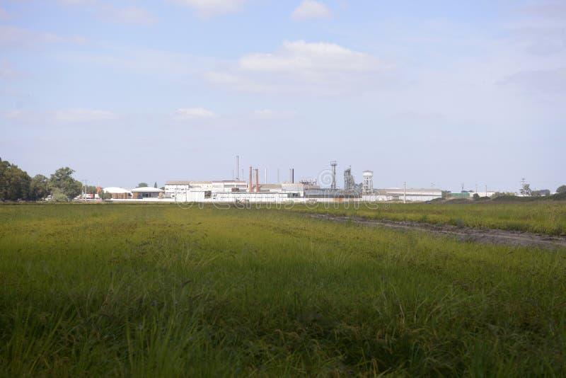 Rolnictwa pole, Rice Husking Fabrycznego budynek, biznes obraz royalty free
