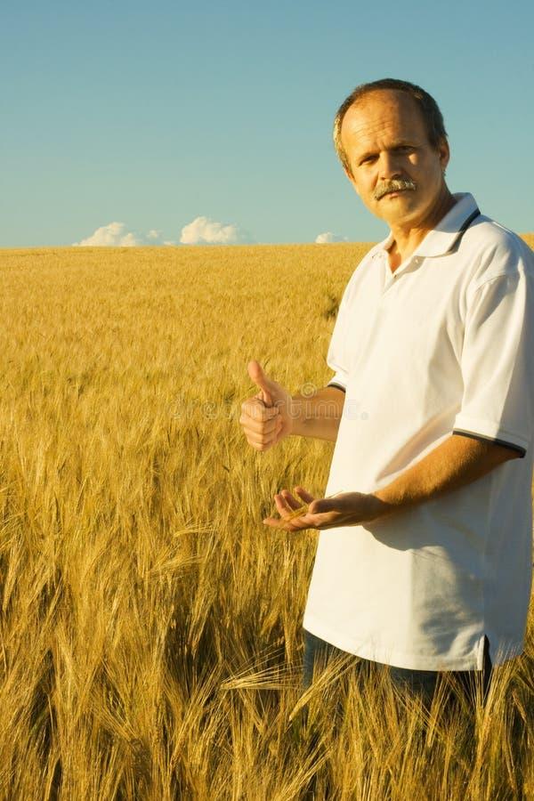 rolnictwo obraz stock