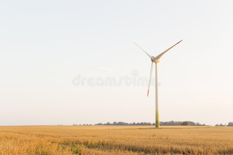 Rolnictwo krajobraz z silnikami wiatrowymi, ciepły wieczór słońce obrazy royalty free
