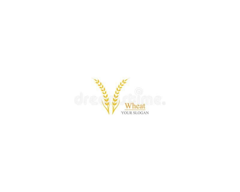 Rolnictwo loga pszenicznego szablonu ikony wektorowy projekt royalty ilustracja