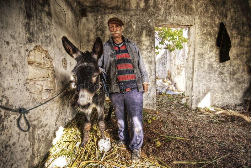 rolnictwo osioł portreta jego pracownik zdjęcia royalty free