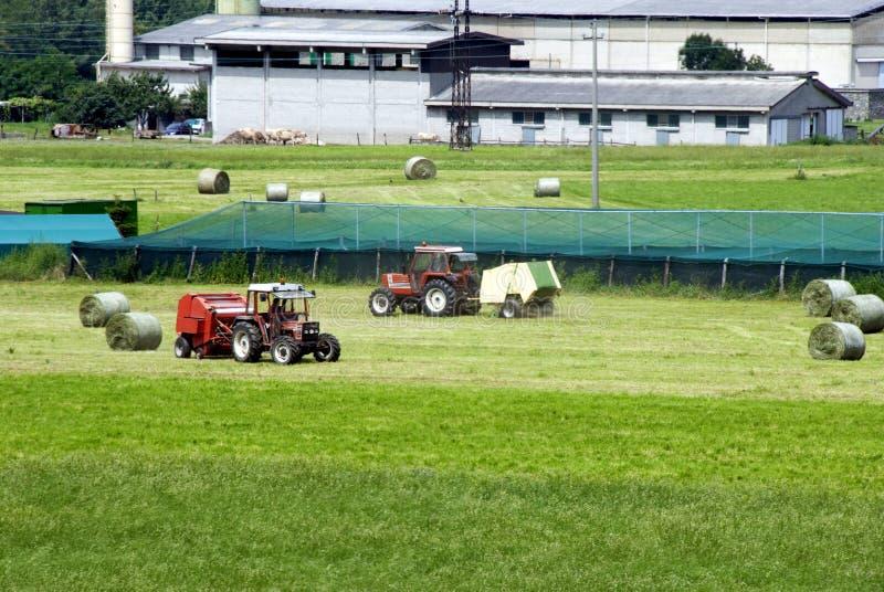 rolnictwo pracy zdjęcia stock
