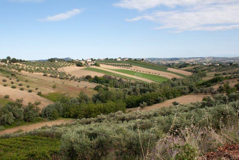 Rolnictwo, widok pola i gospodarstwa rolne w Italy, obrazy royalty free