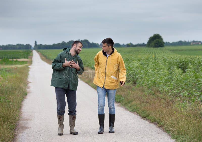 Rolnicy chodzi na wiejskiej drodze obrazy stock
