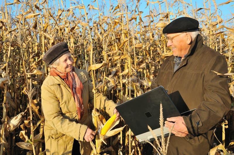 rolnicy odpowiadają szczęśliwego fotografia royalty free