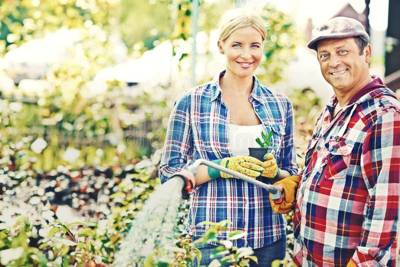Rolnicy przy pracą zdjęcie royalty free