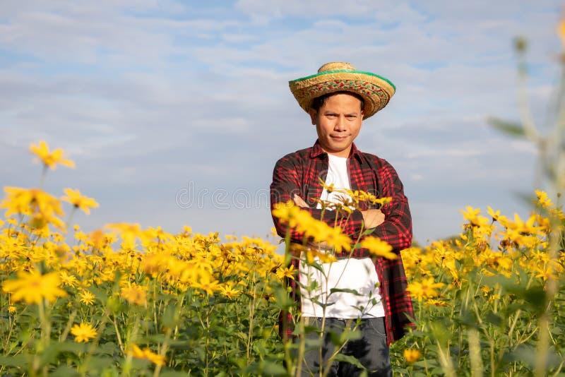 Rolnicy sprawdzaj? pogodnego lato kwiat?w gospodarstwo rolne obrazy stock