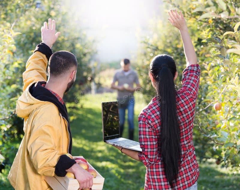 Rolnicy w jabłczanym sadzie fotografia royalty free