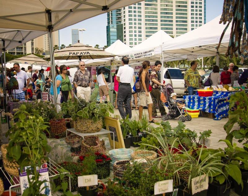 Rolnicy Wprowadzać na rynek Honolulu, Oahu Hawaje obraz stock