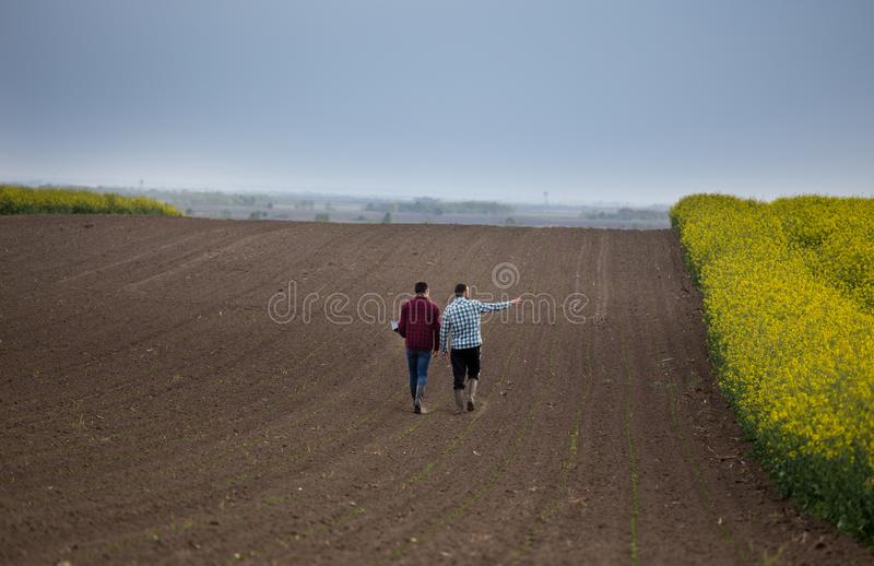 Rolnicy z laptopem w polu obrazy stock