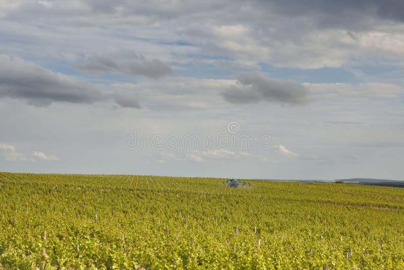 Rolnicza Loire dolina obraz royalty free