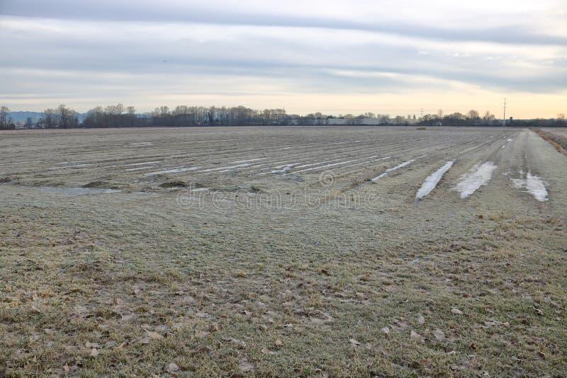 Rolnicza ziemia uprawna w zimie zdjęcie stock
