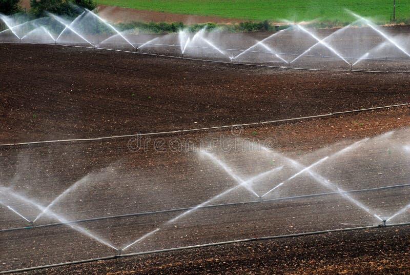 Download Rolniczy Irygacyjni Poziomy Zdjęcie Stock - Obraz złożonej z świeży, wieś: 13333552