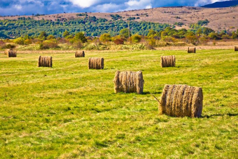 Rolniczy krajobraz Lika region obrazy stock