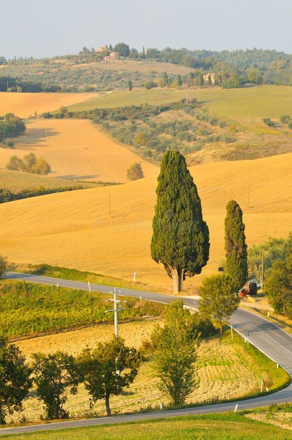 Rolniczy krajobraz w Toscana zdjęcia stock
