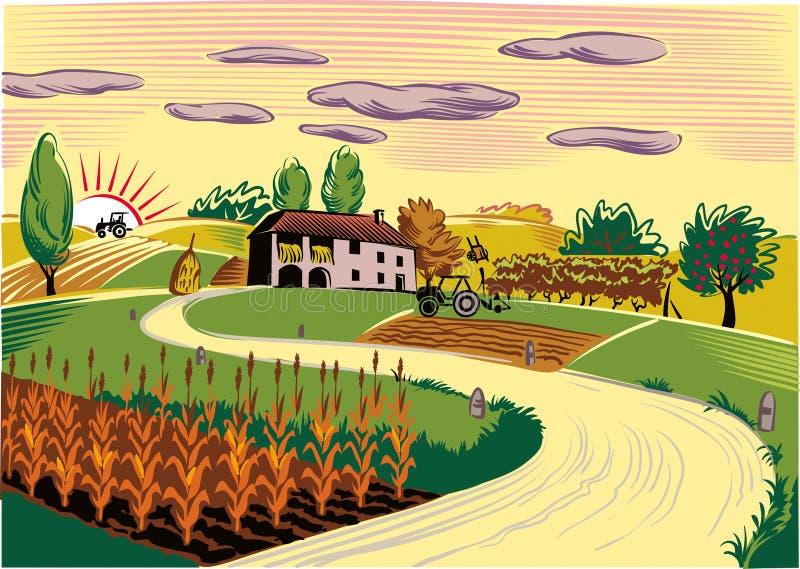Rolniczy krajobraz z rolnymi i kultywującymi polami ilustracji