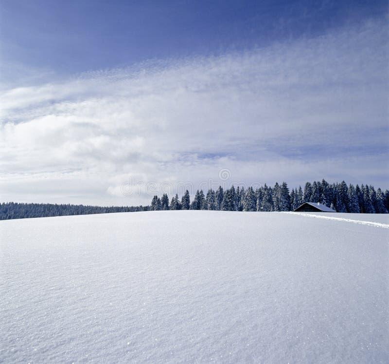 Rolniczy krajobrazowy Szwajcaria jury gospodarstwa rolnego śnieg zdjęcie royalty free