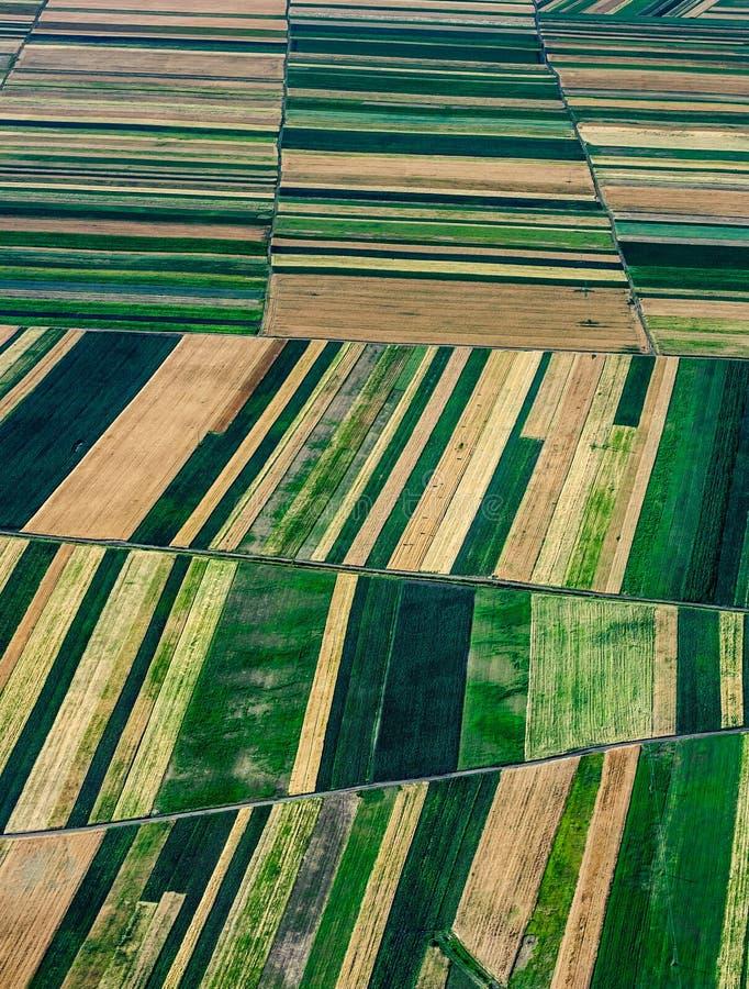 Rolniczy pakuneczek fotografia royalty free