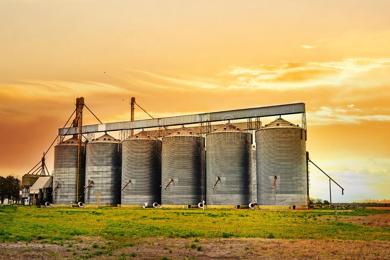 Rolniczy silosy przy zmierzchem zdjęcie royalty free