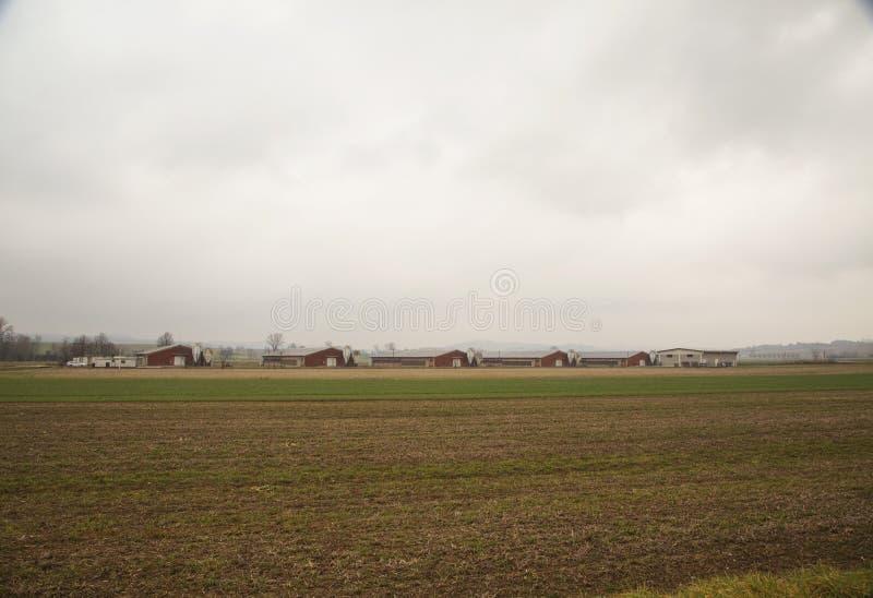 Rolniczy założenia w polach zdjęcia royalty free