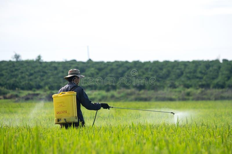 rolnik zdjęcia stock