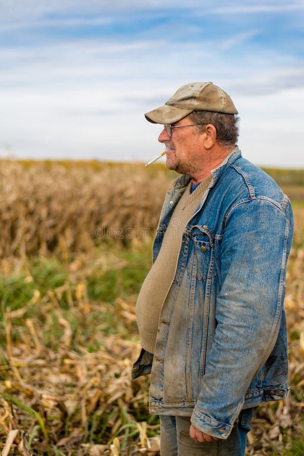 Rolnik na polu, kukurudza fotografia royalty free