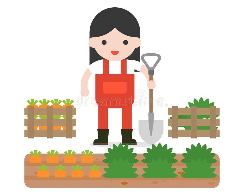 Rolnik, ogrodnictwo lub marchewki skrzynka w płaskim projekcie royalty ilustracja