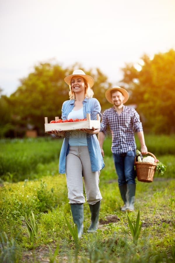 Rolnik pary mienia warzywa fotografia stock