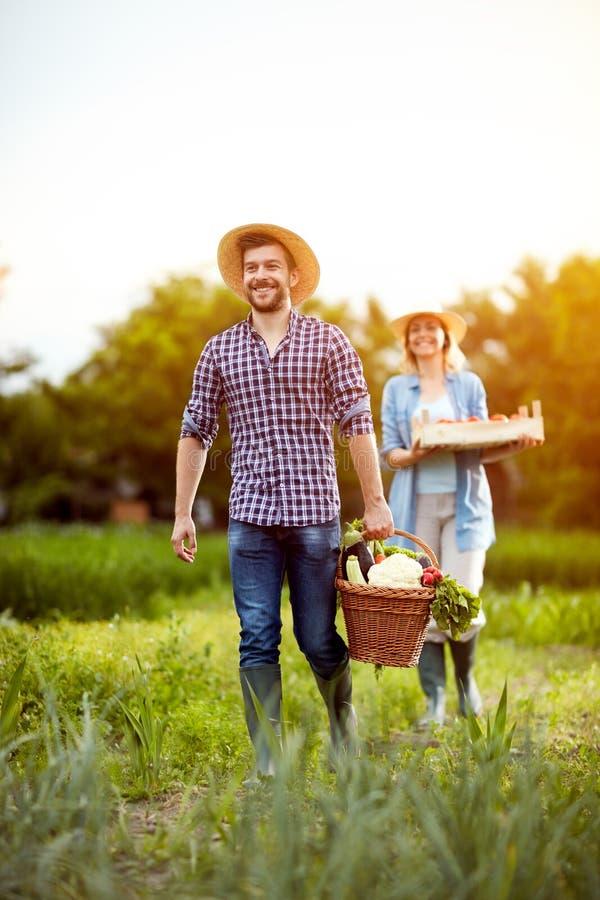 Rolnik pary oddawanie od ogródu z warzywami fotografia stock