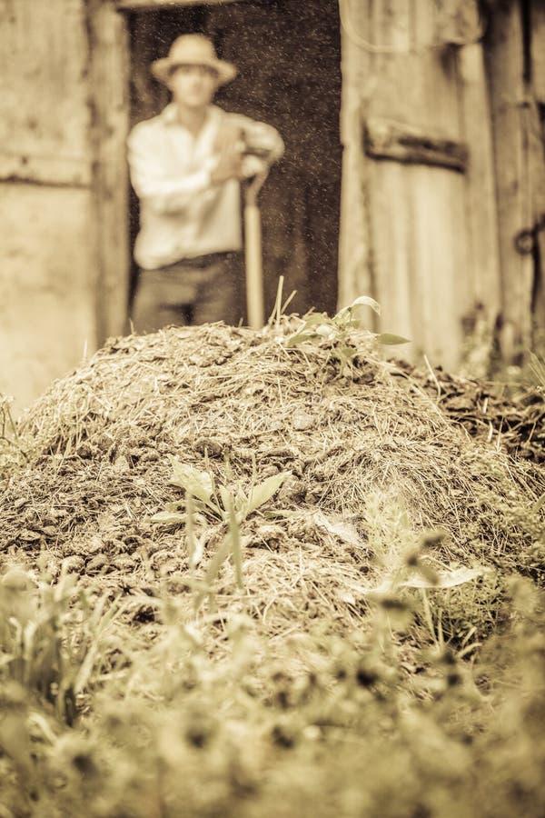 Rolnik Przeszuflowywa Końskiego nawóz obrazy stock