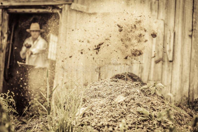Rolnik Przeszuflowywa Końskiego nawóz zdjęcie stock