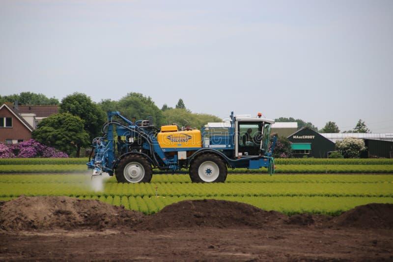 Rolnik rozpyla pestycydy i innych narastających additives nad ziemią w Zoeterwoude w De Holandia zdjęcia stock