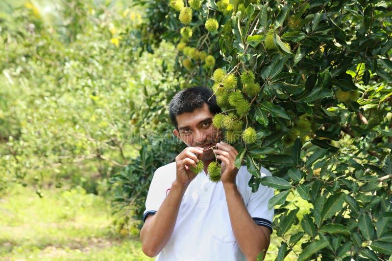 rolnik szczęśliwy zdjęcia royalty free