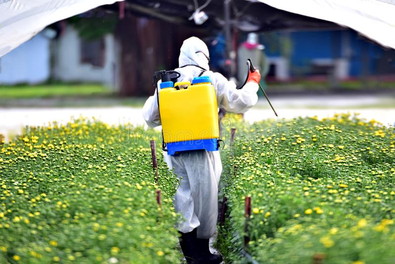 Rolnik w Chemicznym ochrona kostiumu rozpylającym obraz stock